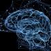 Cómo funciona el cerebro virtual del asistente de Google