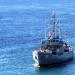 Armada dominicana rescata 20 se iban en yola que zozobró rumbo a PR
