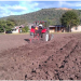 Amenaza de la sequía inquieta a los productores